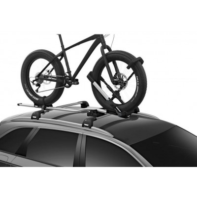 Thule Up Ride 599